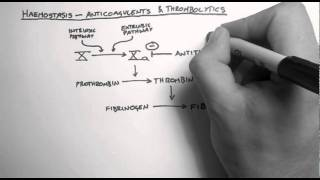 Haemostasis 3 - Anticoagulants & Thrombolytics