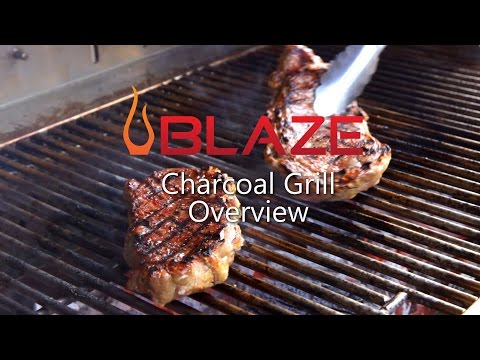 Blaze Stainless Steel Charcoal Grill Overview