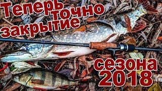 Рыбалка спиннингом осенью на окуня и щуку