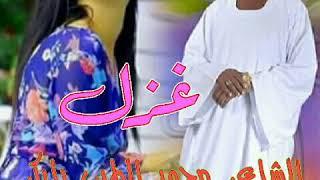 الشاعر محمد الطيب بابكر