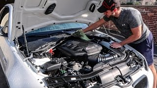 Engine Bay Detail: E92 M3