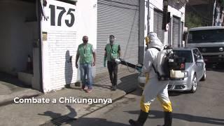 Ação contra chikungunya pulveriza 48 imóveis no Valongo