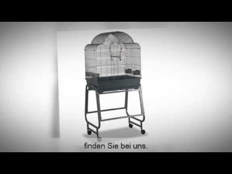 Vogelkäfig kaufen - Tipps und Tests