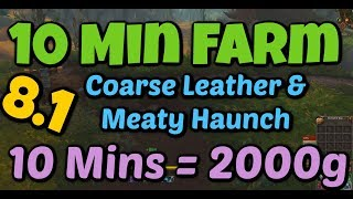 WoW BFA 10 Minute Farm 2000+ Gold GREAT Skinning Leather and Meat