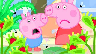 Peppa Pig Official Channel   Peppa Pig Play the Venus Fly Trap Game