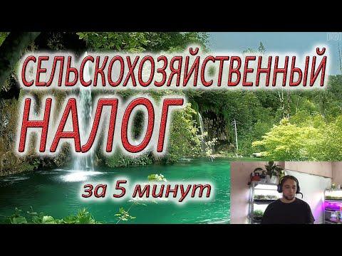Единый сельхоз НАЛОГ. Самое четкое видео последних лет. Микрозелень. Документация