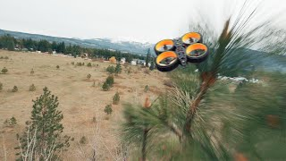 FPV FREESTYLE GONE WRONG - *60 foot tree crash *