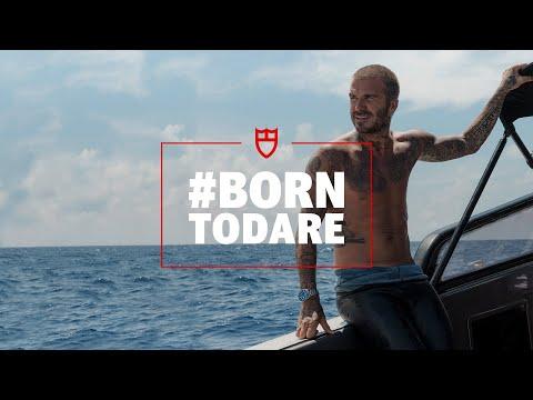 TUDOR: Dare to Dive