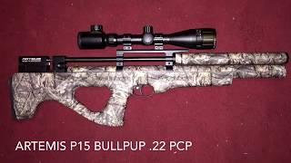 SPA,SMK,ONIX,Artemis PP 700 W / 177/ - hmong video