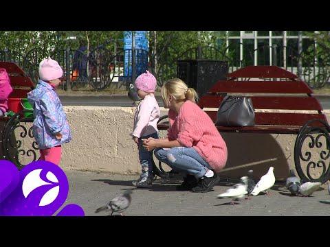 Многодетным родителям станет проще получить пособие на детей до 3 лет
