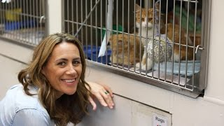 Youtube thumbnail for Jenny-May Clarkson visits the Mangere SPCA