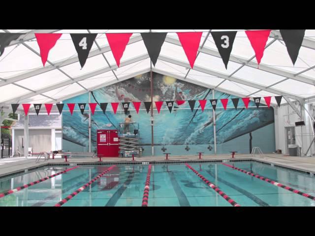 Olympic Swim Race Pool Mural