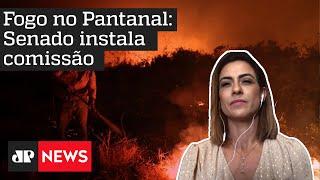 Pantanal: Senado instala Comissão para fiscalizar ações contra queimadas
