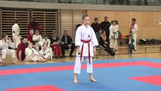 preview picture of video 'Karate Teil 1/4'
