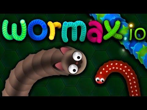 Die Haut bei den Würmern