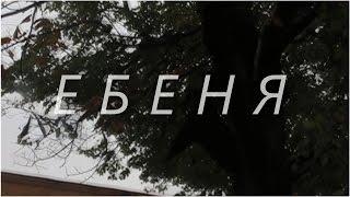 ЕБЕНЯ. АРТХАУС. КАМЕРА 10 МП