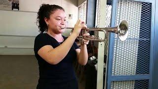 espinas tiene el rosal |cover trompeta