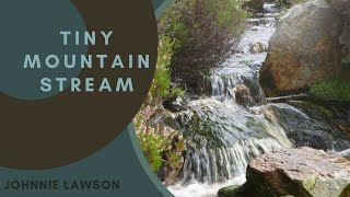 Nature Sounds-Relaxing Soothing Waterfall Sound-Birds Singing-Forest Relaxation Birdsong-Mindfulness