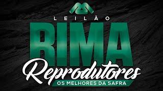 Rima ourives