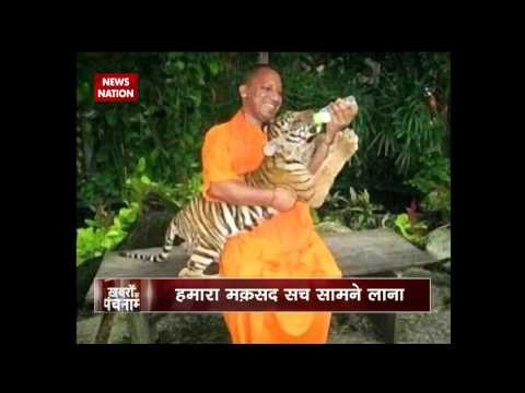 Khabron Ka Punchnama: Video showing CM Yogi Adityanath with pet tigers goes viral