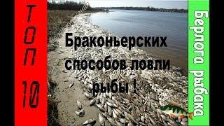 Запрещенные приспособления для ловли рыбы