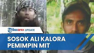 Sosok Ali Kalora yang Tewas dalam Baku Tembak, Buron sejak 2016 dan Otaki Berbagai Penyerangan