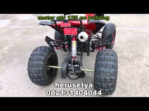 Video HARGA MOTOR ATV 125 CC 082131404044 | ATV MOTOR 125 CC TAKISUNG 082131404044