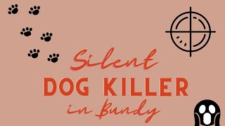 There's a Silent Dog Killer in Bundaberg...