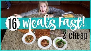 16 Bulk Meals In Under Two Hours! 💙 ORGANIZED FREEZER COOKING