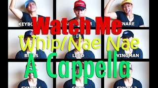 Watch Me (Whip/Nae Nae) One Man Band/ A cappella/ Voice & Mouth Only