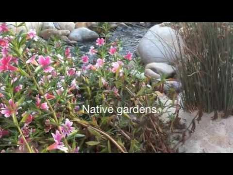 Ecological landscape designer; www.artofecology.com