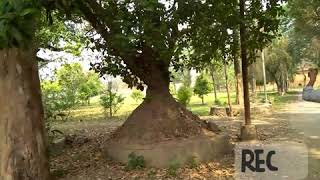 Inside Kangla A Historical Place Of Manipur.