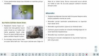 Eğitim Vadisi 9.Sınıf Biyoloji 2.Föy Canlıların Yapısında Bulunan Temel Bileşikler Konu Anlatım Videoları