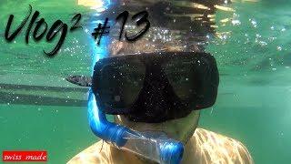 Unter Wasser mit dem grössten Fisch der Welt