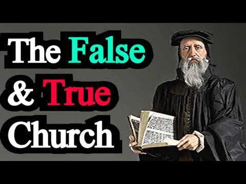 Comparison Between the False Church and the True - John Calvin / Institutes