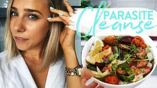 PARASITE CLEANSE   How I'm Curing Myself Naturally   Home Remedies