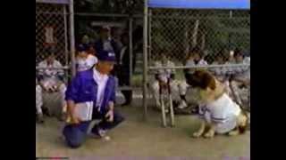 USA - Dog House Baseball Episode 1990