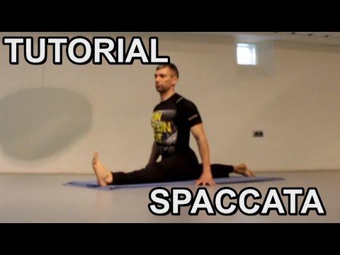 Esercitare toracica dorsale della colonna vertebrale