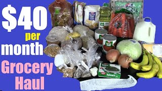 $40 Per Month / $10 Per Week Groceries (No Processed Food!)