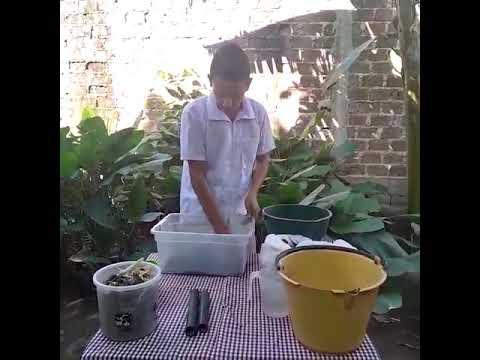 Elaboración de un compost casero