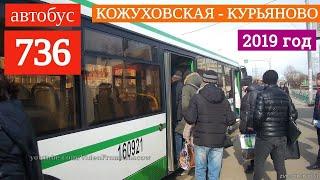 Автобус 736 метро Кожуховская - Курьяново // 21 марта 2019