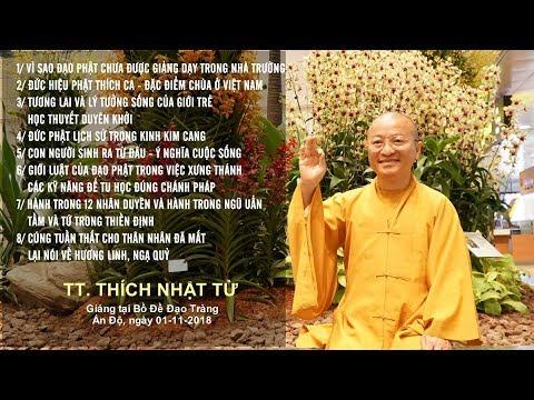 Vấn đáp: Vì sao PG chưa được giảng dạy trong nhà trường- Chùa ở Việt Nam - TT. Thích Nhật Từ