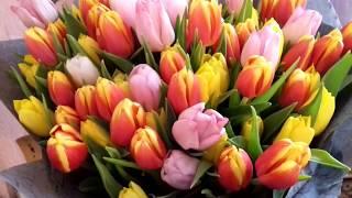 Я вас всех Люблю!!!С Праздником 8 Марта всех Поздравляю!