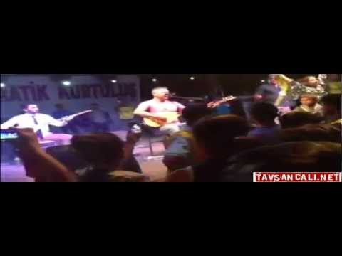 Omaro Festivalinden Kareler ve Video II