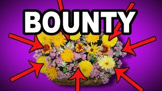 💐 Learn English Words - BOUNTY - Meaning, Vocabulary with Pictures and Examples