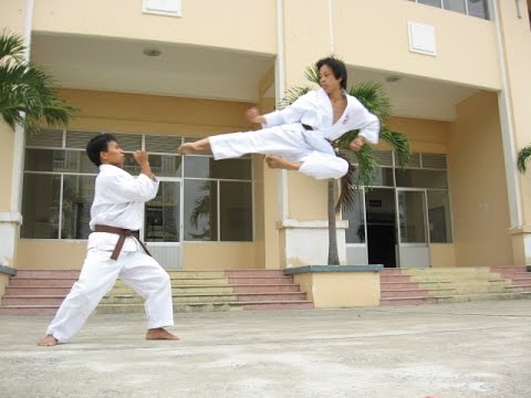 Tobi Yoko geri in Karate