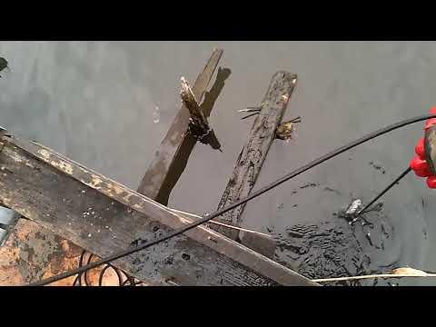 Magnet fishing mágnes