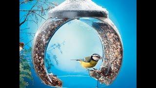Очень красивые кормушки для птиц своими руками