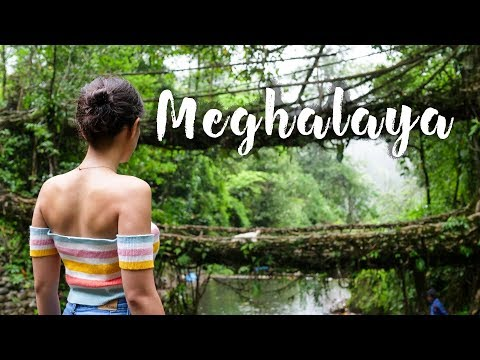Download Backpacking In Meghalaya | NorthEast India Trip | Sohra, Living Roots Bridge | Tanya Khanijow HD Mp4 3GP Video and MP3
