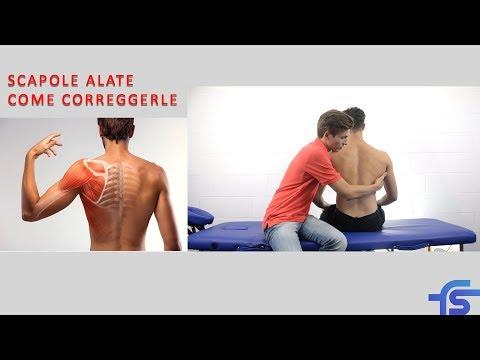 Si rimuove il dolore di ernia posteriore